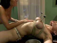 Dark haired milf Annika with massive tits gets tied up and tortured by two unmerciful women Gia Dimarco and Asphyxia Noir. They use strapon to fuck her ass.