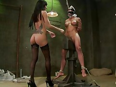 brunette babe punishing her martyr