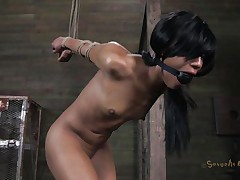 Isn't Nikki a sweet girl and hot too? She's tied, blindfolded and face hole gagged with a ball. A big black male pumps her from behind and rips Nikki's pussy before taking care of her mouth. His white buddy comes to help him punish this bitch and fucks her ass from behind too while the black one deep throats her