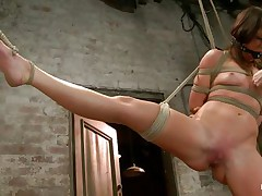 With weights added to her large nipples, slutty milf Mia Gold is tied up and has one leg in the air for a better pussy domination. Having her mouth gagged, she can merely moan. Her mistress sticks a large dildo in that wet cunt of hers and a vibrator on her clit to drive her crazy. Will she cum soon?